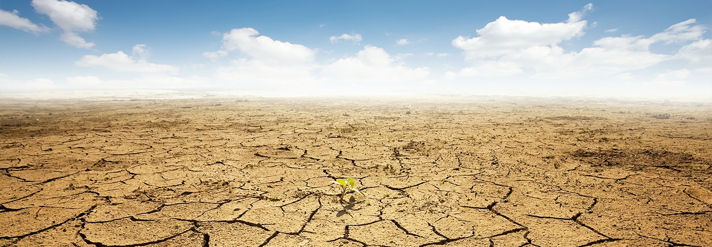 Why we must address COVID-19 AND climate change